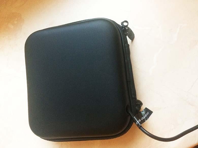 Lovehoney Desire Luxury USB Rechargeable Clitoral Vibrator Test angeschlossen Tasche 08
